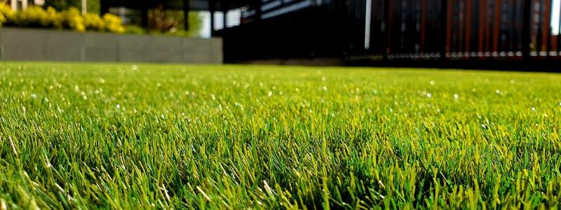Best Austin Lawn Service Companies