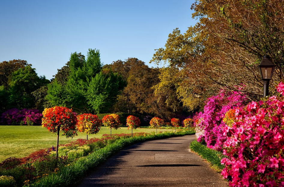 best austin landscape design