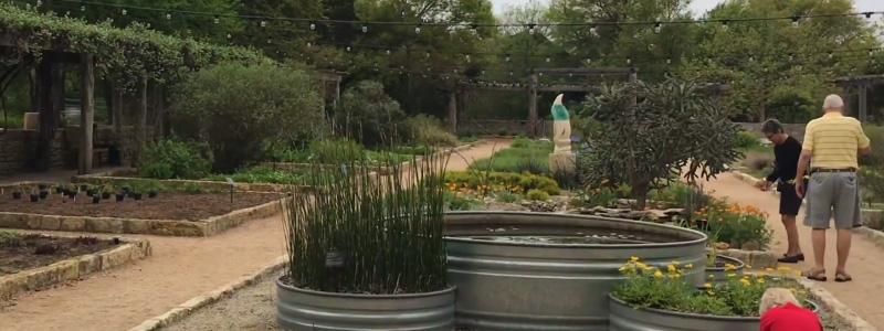 Austin Wildflower Center