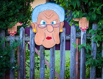 https://www.youraustincommunity.com/wp-content/uploads/2020/10/fence-hedge-artwork-grandma-painted-horror-garden-fence-nature-green-thumbnail.jpg